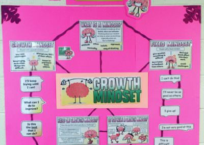 The Growth Mindset Pack (sent by SJ)